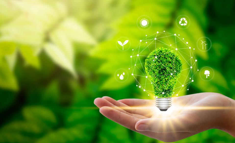 Seis tendencias de consumo sustentable